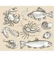 Hand drawn sketch set seafood vector image vector image