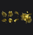 set golden branches tropical plants vector image vector image