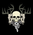 skull and deer head vector image
