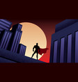 superhero city night vector image