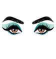 brown eyes make up vector image vector image