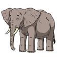 cartoon african male elephant vector image vector image