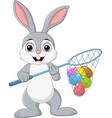 cartoon rabbit hunting easter eggs vector image vector image