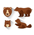 grizzly bear and beaver animals wildlife vector image