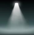 Lantern illuminates the dark background vector image vector image