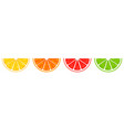 realistic 3d set sliced orange grapefruit vector image vector image