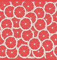 red grapefruit vector image
