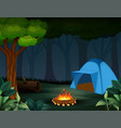 tents with bonfire on dark night forest background vector image