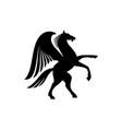 unicorn or pegasus isolated winged animal horse vector image