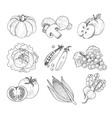 Fruit and Vegetables Handdrawn vector image