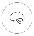 brain icon black color in circle vector image vector image