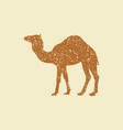 camel icon silhouette vector image vector image