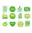 eco sticker vegetarian natural healthy food vector image vector image