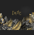 exotical background with black and gold vector image