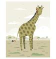 giraffe in savanna vector image