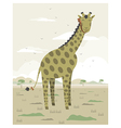 Giraffe in the savanna vector image