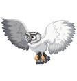 Grey owl vector image vector image