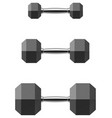 hexagonal dumbbell set isolated on white vector image vector image