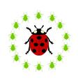 Ladybird diet vector image vector image