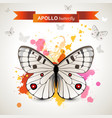 apollo butterfly vector image vector image