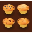 four muffins vector image vector image