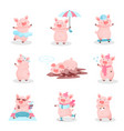 funny pigs activity set cute piglets cartoon vector image vector image