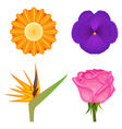 solid colors flowers set vector image