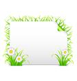Grass banner vector image