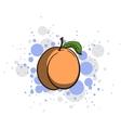Bright Juicy Peach vector image