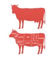 cow scheme cuts of beef vector image