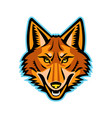 coyote head front mascot vector image vector image