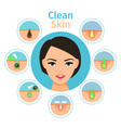 female facial treatments vector image