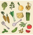 fresh food vector image vector image
