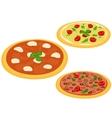 Italian pizzas vector image vector image