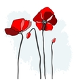 Red poppies on a sky background vector image