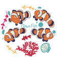set clown fish isolated on a white background vector image