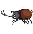 Beetle with brown shell vector image vector image