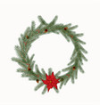 christmas wreath with cones flowers isolated on a vector image vector image