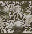 hexagonal camouflage pattern vector image vector image