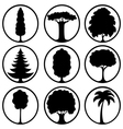 Icons of different trees vector image vector image