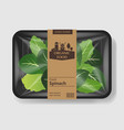 spinach salad leaves with plastic tray container vector image vector image