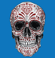 Realistic Day of the Dead Sugar Skull vector image