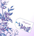Blueberry frame vector image