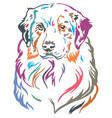 colorful decorative portrait of australian vector image vector image