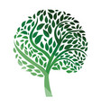 ecological tree leaves icon vector image