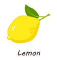 lemon icon isometric style vector image vector image
