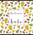 autumn frame background wreath autumn leaves vector image