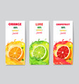 banners with citrus fruit juice and splashes vector image