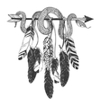 Dreamcatcher with arrow feathers and snake vector image vector image