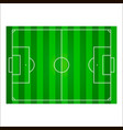 football field or soccer pitch background vector image vector image